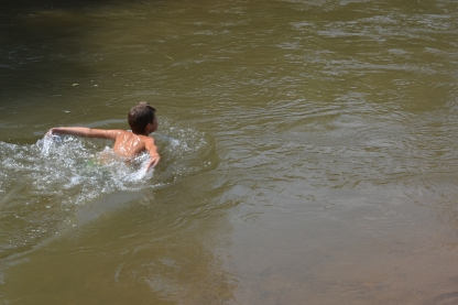 Porty swimming in the river